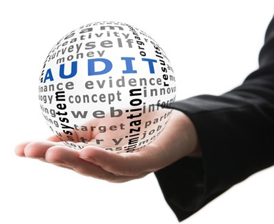21617690-transparent-ball-with-inscription-audit-in-a-hand-audit-training-business.jpg